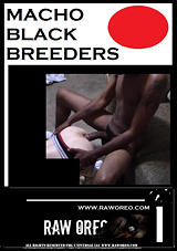 Macho Black Breeders