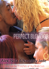 Perfect Blowjob