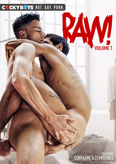 Raw Volume 1 Cover Front