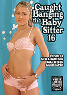 Caught Banging The Baby Sitter 16