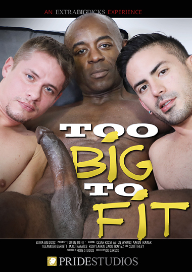 Too Big to Fit Cover Front