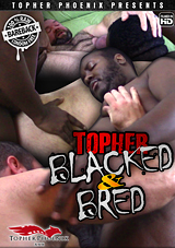 Topher Blacked And Bred