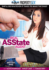 The RealAsstate Agent