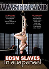 BDSM Slaves: In Suspense