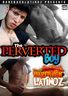 The Perverted Boy