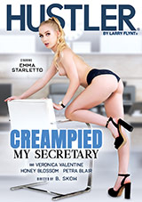 Creampied My Secretary