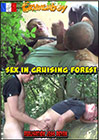 Sex In Cruising Forest
