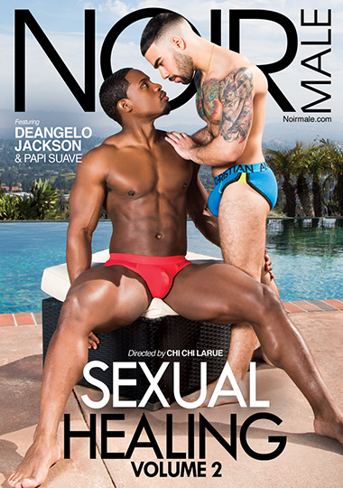 Sexual Healing 2 Cover Front
