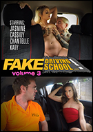 Fake Driving School 3