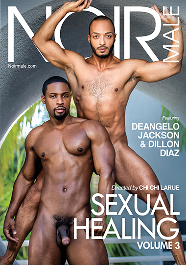 Sexual Healing 3 Cover Front
