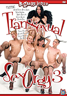 Transsexual Sex Orgy 3