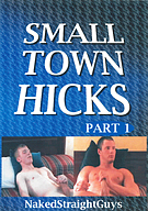 Small Town Hicks