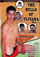 The Bulls Of Tijuana