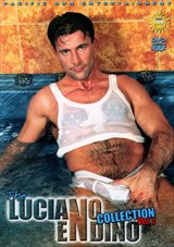 The Luciano Endino Collection