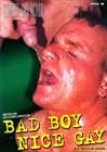 Bad Boy - Nice Gay