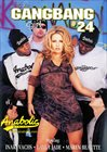 The Gangbang Girl 24