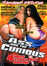 The Ass And The Curious