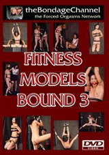 Fitness Models Bound 3