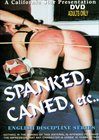 English Discipline Series: Spanked, Caned, Etc.
