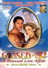 Goosed For 3: A Bisexual Love Affair
