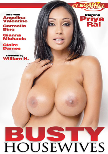 Busty Housewives cover