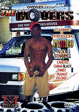 The Movers Xvideo gay