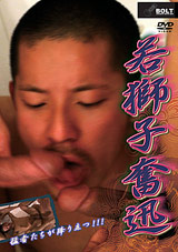 Young Like Crazy Xvideo gay