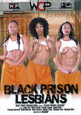 Black Prison Lesbians Download Xvideos