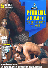 Pitbull: Deep Inside Yo Azz