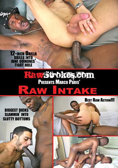 Raw Intake