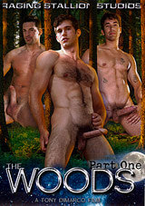 The Woods Xvideo gay