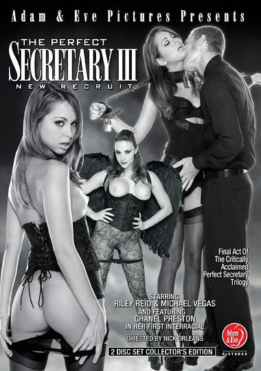 The Perfect Secretary 3: New Recruit