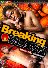 Breaking Black Xvideo gay