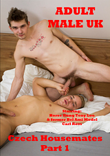 Czech Housemates Xvideo gay
