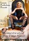 Domesticated Stocking Slave