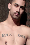 AEBN weekly top ten gay star Ethan Wolf