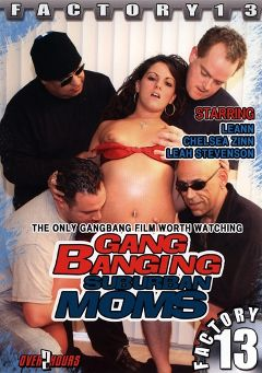 "Adult entertainment movie ""Gang Banging Suburban Moms"" starring Rachel Milan, Tony X & Panama Jack. Produced by Factory 13."