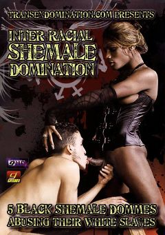 "Adult entertainment movie ""Inter-Racial Shemale Domination"" starring Amyiaa Star, Natassia Dreams & Nyobi Kahn. Produced by Grooby Productions."