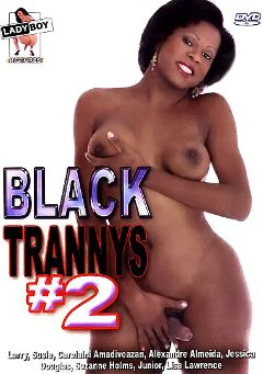 "Adult entertainment movie ""Black Trannys 2"" starring Susie (o), Carolaini Amadivoazan & Jessica (o). Produced by Lady Boy Pictures."