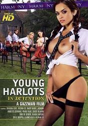 Straight Adult Movie Young Harlots: In Detention