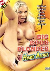 Straight Adult Movie Big Boob Blondes Home Alone