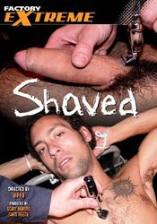 Gay Adult Movie Shaved