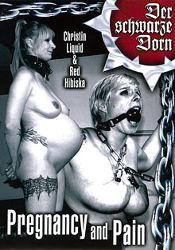 Straight Adult Movie Pregnancy And Punishment