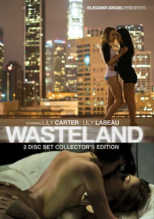 Straight Adult Movie Wasteland