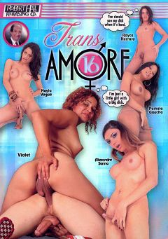 "Adult entertainment movie ""Trans Amore 16"" starring Rayka Karraro, Violet (o) & Alana Mancini. Produced by Robert Hill Releasing Co.."