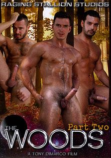 The Woods 2, starring Marcus Ruhl, Charlie Harding, Jessy Ares, Trenton Ducati, Paddy O'Brian, D.O., Landon Conrad, Kyle King and Jesse Santana, produced by Raging Stallion Studios and Falcon Studios Group.