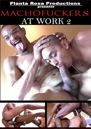 Gay Adult Movie Machofuckers At Work 2