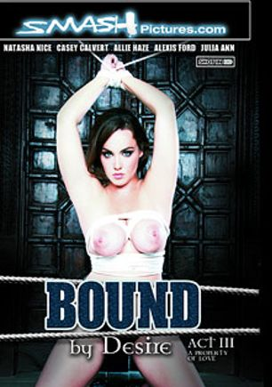Bound By Desire: Act 3: A Property Of Love, starring Natasha Nice, Logan Pierce, Casey Calvert, Richie's Brain, Alexis Ford, Allie Haze, Ryan Driller, Johnny Castle and Julia Ann, produced by Smash Pictures.