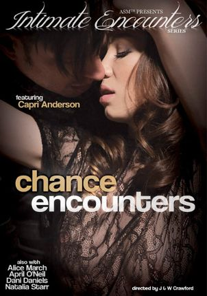Straight Adult Movie Intimate Encounters: Chance Encounters