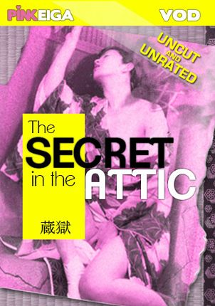 Straight Adult Movie The Secret In The Attic
